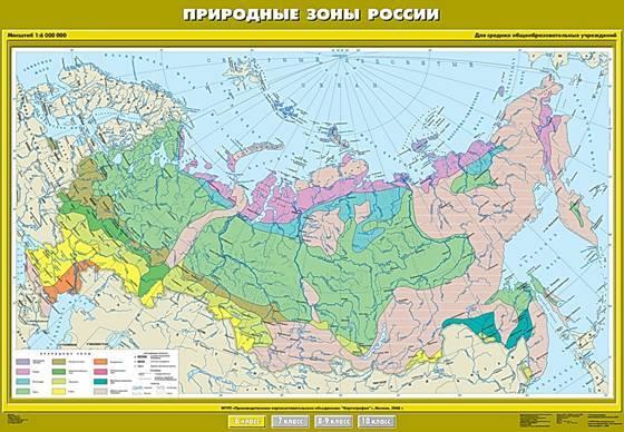 В какой природной зоне мы живем россия