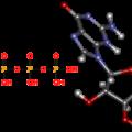 Схема строения рибосомы