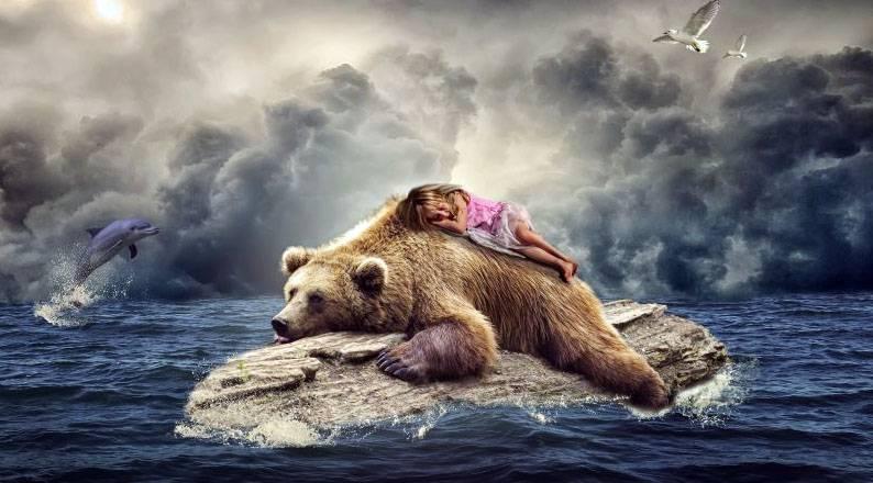 Максимальная скорость медведя при беге