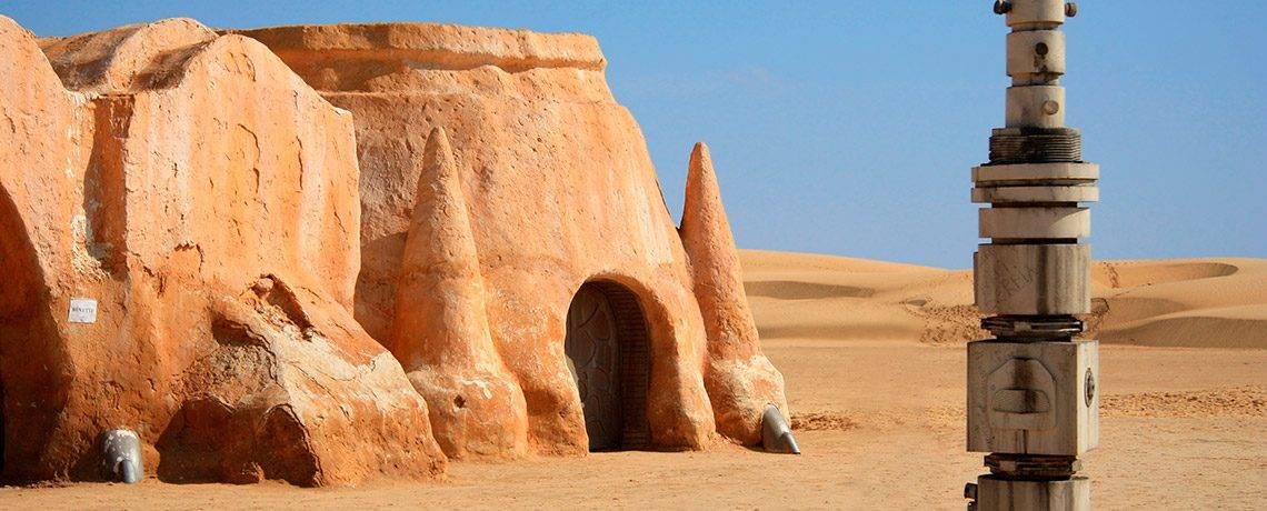 Обитатели пустыни сахара