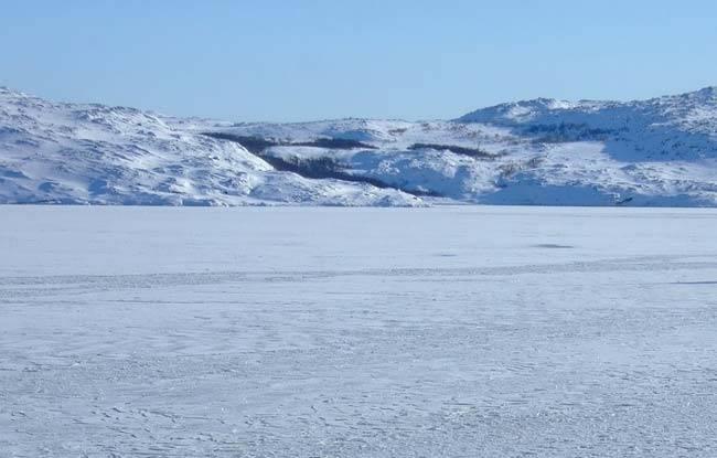 Сообщение про арктические пустыни
