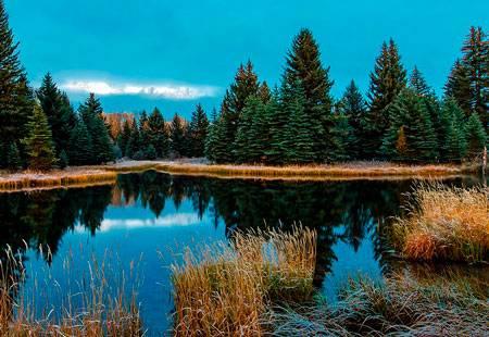 Сочинение про лесное озеро