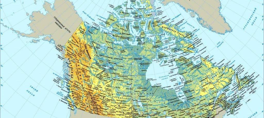 Фауна канады
