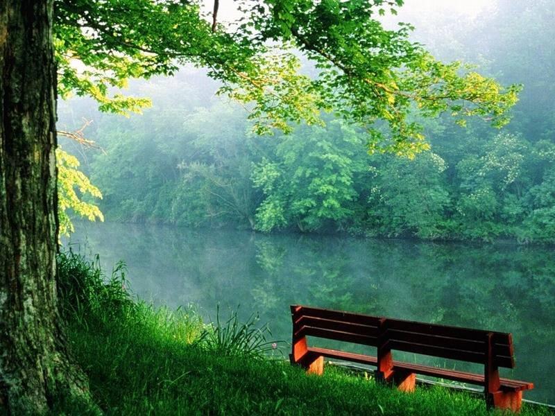Что дает нам природа