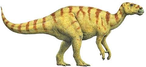Динозавры разновидности с названиями