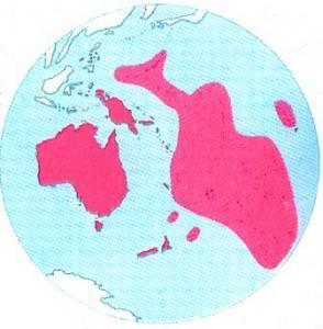 На каком континенте находится австралия