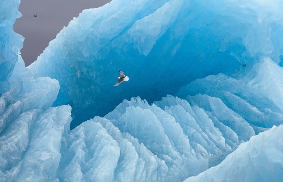 Глобальное потепление фото