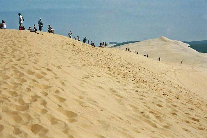 Дюны и барханы разница