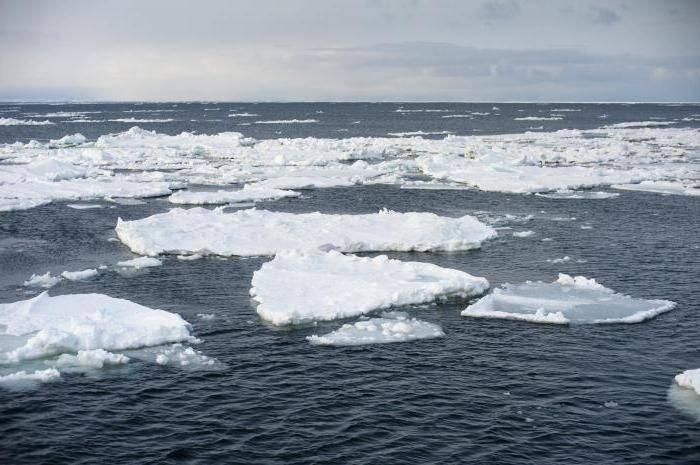 Площадь океанов и материков