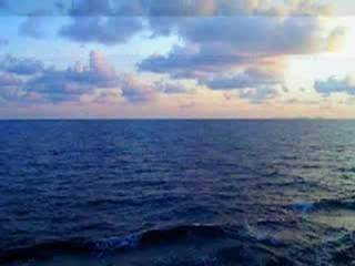 Сколько на планете океанов и какие