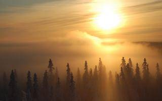 Зимнее утро сочинение описание