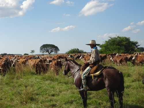 Земельные ресурсы южной америки