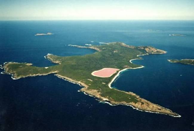 Розовое море фото