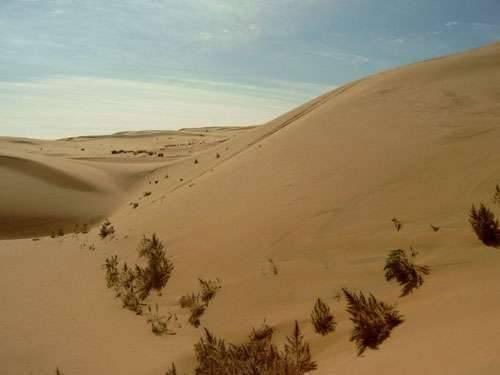 На каком материке находится пустыня гоби