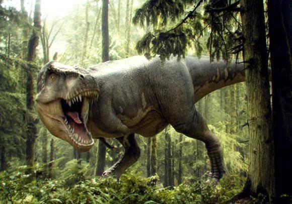 Ящеры и динозавры