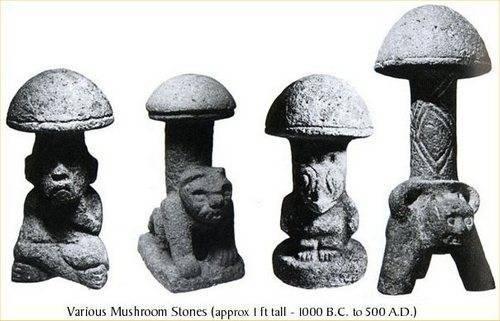 Энциклопедия галлюциногенных грибов