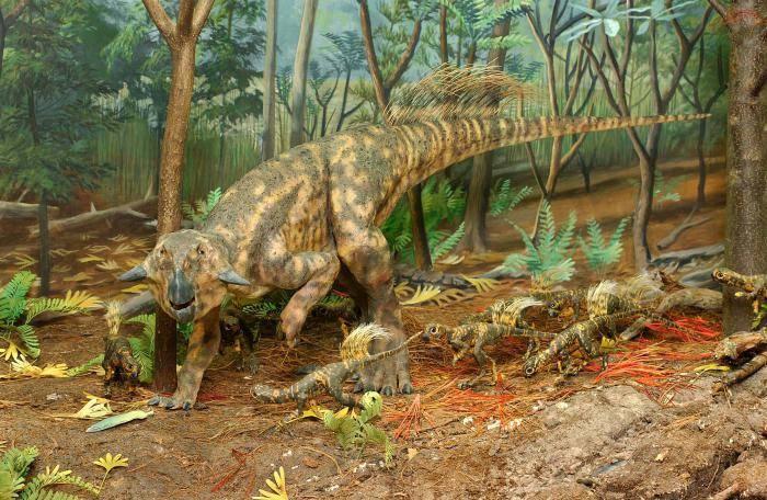 Еволюція динозаврів