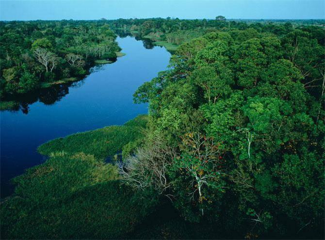 В какой океан впадает амазонка