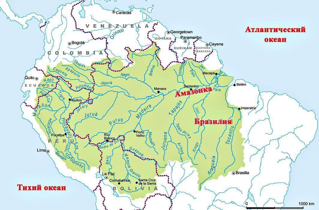 Самая протяженная река в мире