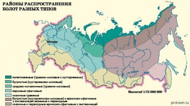 Самые заболоченные территории россии