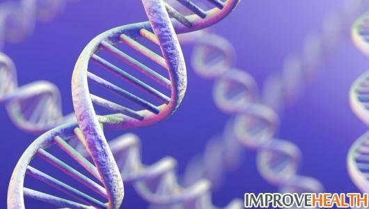 Количество клеток в организме человека