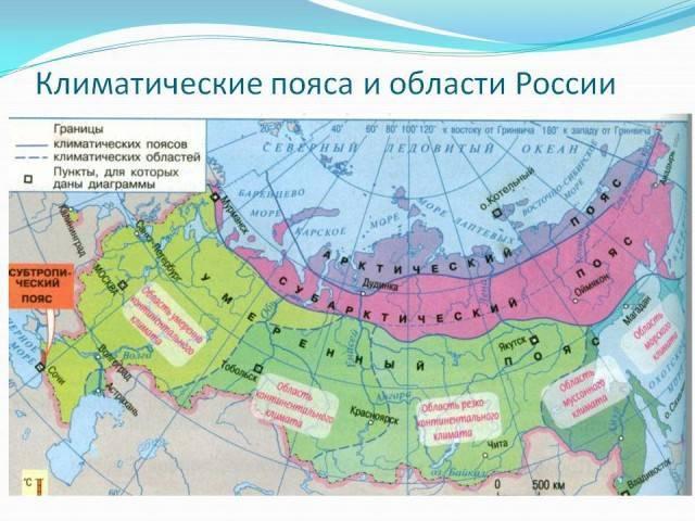 Основные климатические пояса россии