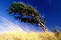 Как объяснить ребенку откуда берется ветер