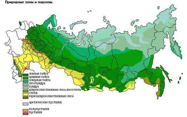 Зона степей на карте россии