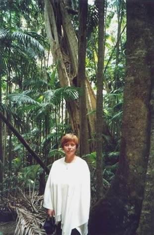 Мангровые леса фото