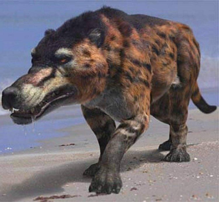 Как вымерли динозавры для детей
