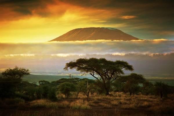 Рельеф влажных экваториальных лесов