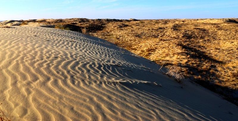 Пустыни и полупустыни казахстана