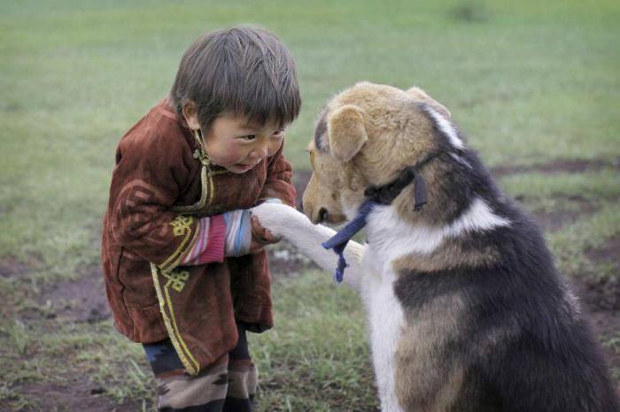 Как появились собаки на земле