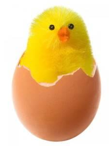 Что произошло раньше курица или яйцо