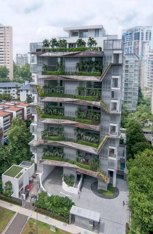 Озеленение городов