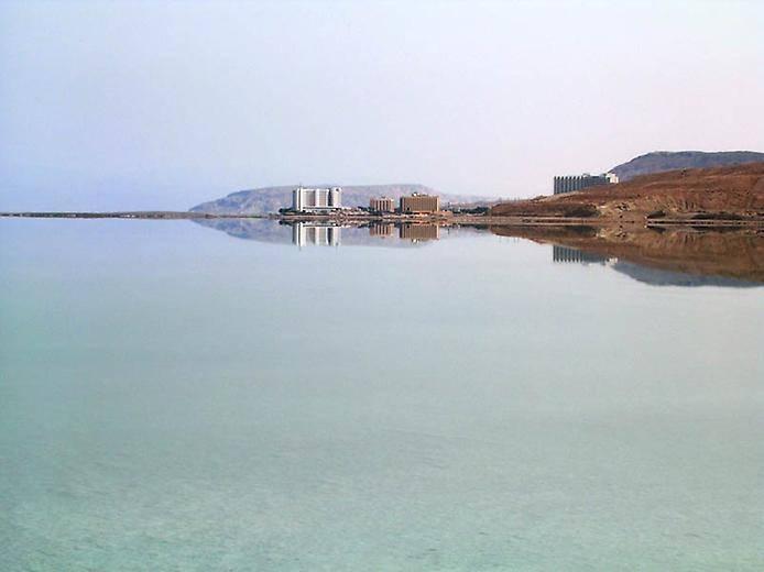 Мертвое море живность
