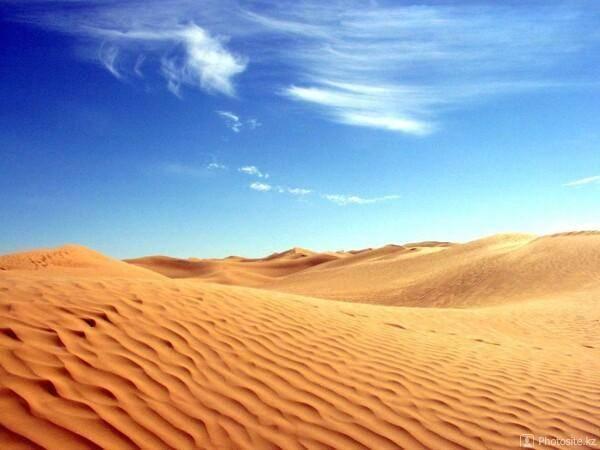 Саванна это не пустыня а