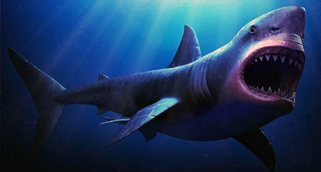 Сколько весит акула мегалодон