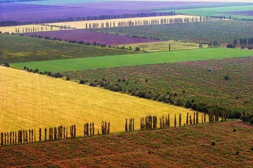 Особенности земельных ресурсов