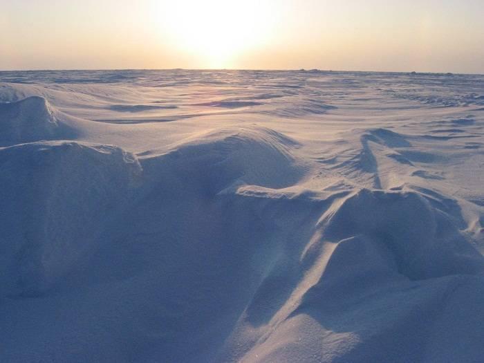 Фото арктические пустыни россии