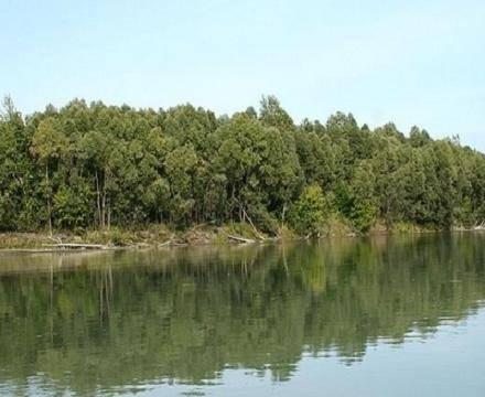 Самая большая река сибири
