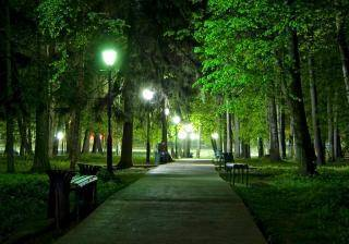 Описание парка сочинение