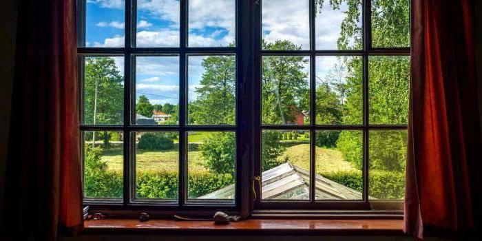 Сочинение вид из окна моей комнаты