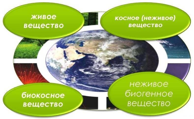Биосфера представляет собой