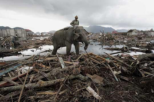 Землетрясение в индийском океане в 2004 году