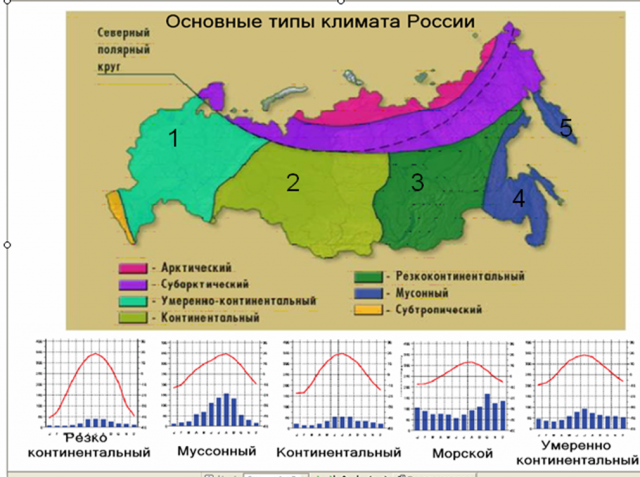 Характеристика арктического климата россии