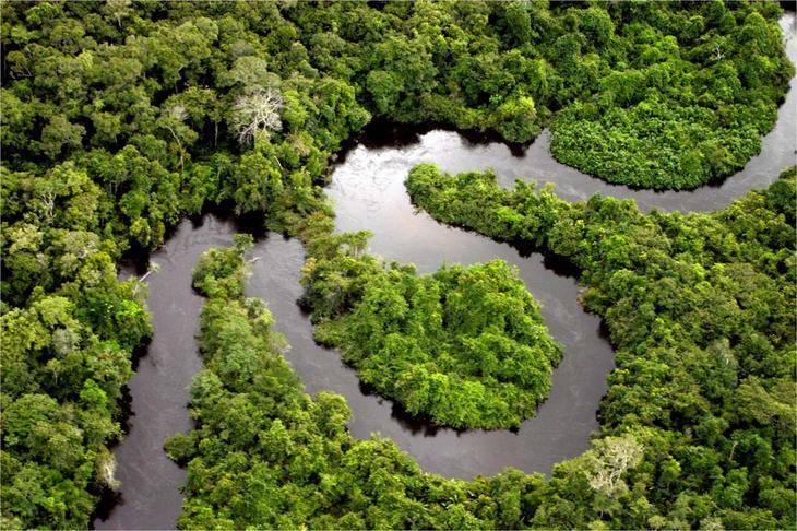 Где берет начало река амазонка