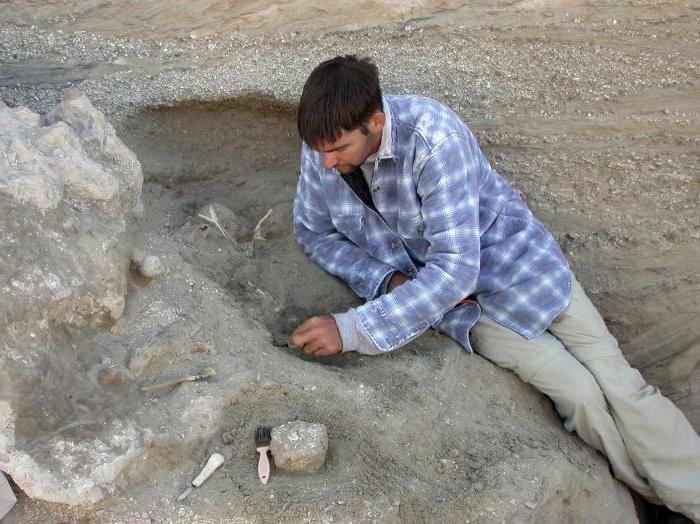 Ископаемые останки живых существ изучает