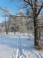 Погода зимой сочинение