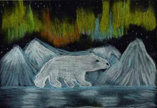Арктическая пустыня рисунки детей